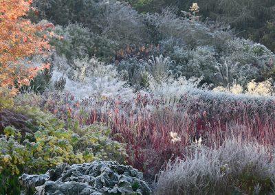Lady Farm Gardens (Angleterre)